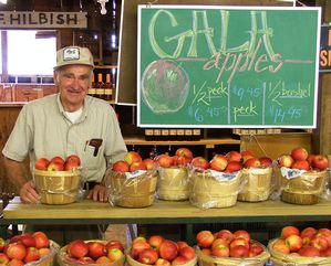 Saunders Brothers farm stand